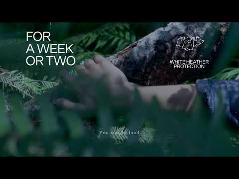 Fleet Foxes – For A Week Or Two (2020)